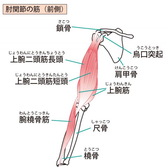 ゴルフ肘への当院のアプローチは?